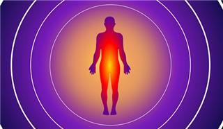 科学家证实:体温高能提升免疫力